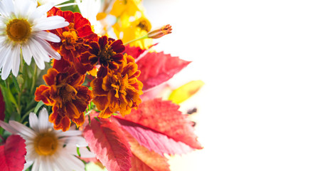 Wall Mural - Colorful autumn bouquet over white