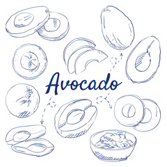 Doodle set of fresh whole and sliced avocado - whole avocado, sliced pieces, half, leaf and seed, top view, bowl of guacamole dip, hand-drawn. Vector sketch illustration isolated over white background