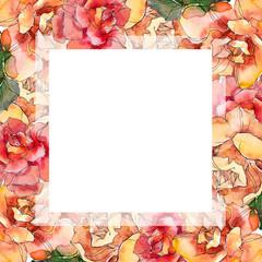 Red and orange Rose floral botanical flower. Watercolor background illustration set. Frame border ornament square.