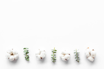 Flowers border with green eucalyptus branches and dry cotton on white background top view copy space. Blog header mockup