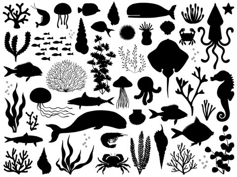 Sea life vector silhouette illustration set