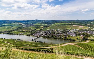 Longuich an der Mosel Rheinland-Pfalz Deutschland
