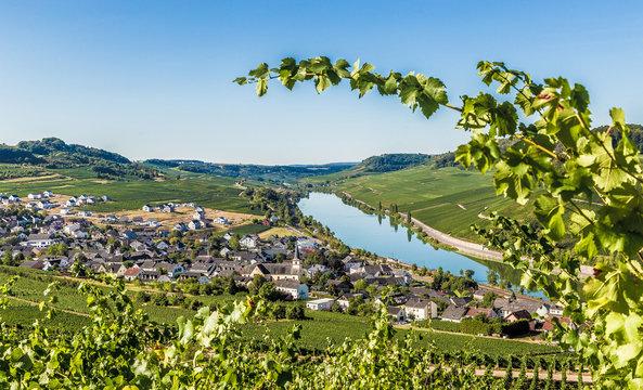 Nittel an der Mosel Rheinland-Pfalz Deutschland