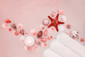 Sea shells and red star fish on sandy beach with copy space for text Wall mural