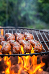 Spicy sausage on grill with herbs and spices
