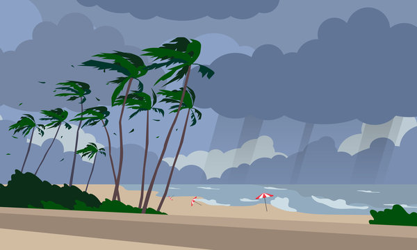 stormy weather beach landscape with palms sea waves  cloudy sky