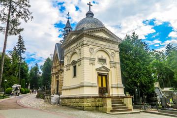 Lviv Lychakiv Cemetery 05