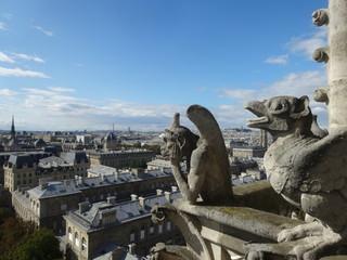 ノートルダム大聖堂、パリ、フランス