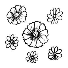 Doodle flowers set in beautiful style. Flat illustration design.