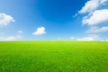 Green grass and blue sky with white clouds