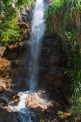 Kleiner Wasserfall zwischen Palmen