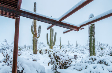 Snow At Browns Ranch Trail Head In North Scottsdale AZ