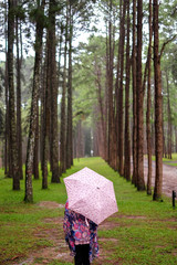 women with umbrella in pine tree field
