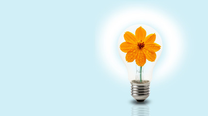 Light bulb with yellow flower inside on light blue background, green energy or environmental energy concept
