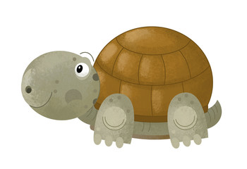 Fotobehang - cartoon scene with happy turtle on white background - illustration for children
