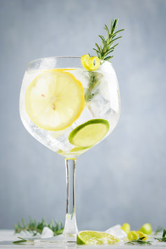 Alcohol drink, gin tonic cocktail, with lemon, lime, rosemary and ice on light background, copy space. Iced drink.