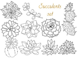 Doodle floral background in vector with doodles black and white coloring page of succulents. Set of tropical plants