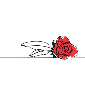 One line drawing of rose flower minimalist design isolated on white background. Vector illustration for poster, banner, and wallpaper template simple elegant continuous line art style.