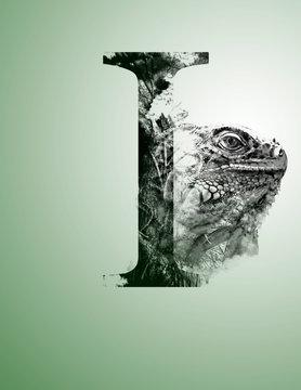 Tipo-Animal Iguana
