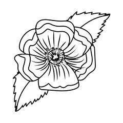 Wall Mural - flower petals drawing