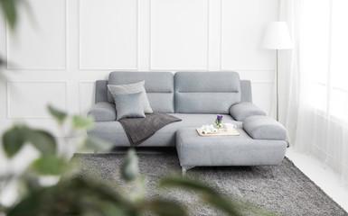 Scandinavian style livingroom with fabric sofa, sofa table. morning image with plant. sofa table on the lug.