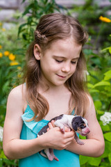 7-years old girl holds in hands and looks to 4-days-old Estonian hound puppy. Summertime in countryside.