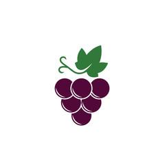 grape icon logo vector