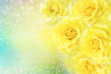 yellow roses flower soft romance background with beautiful glitter and copy space