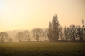 Sunrise Devon Countryside