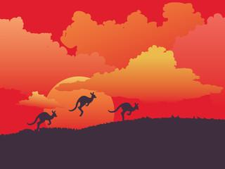Landscape with kangaroo