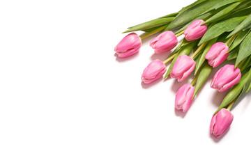 Obraz Bukiet różowych tulipanów - fototapety do salonu