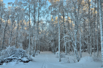 Winter morning in the mountains of the southern Urals