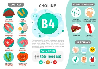 Infographics Vitamin B4. Products containing vitamin. Daily norm. Symptoms of deficiency. Vector medical poster.
