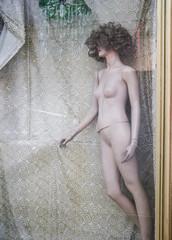Schaufenster 2