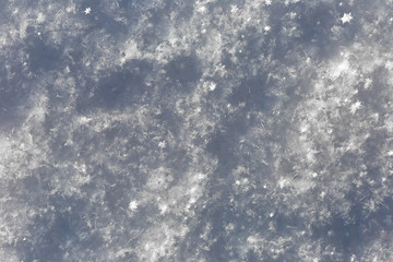 Gray snow surface texture with snowflakes. Winter background.
