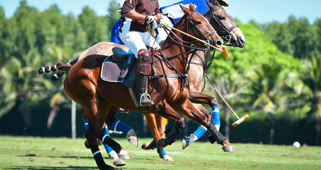 Polo Player battle in match.