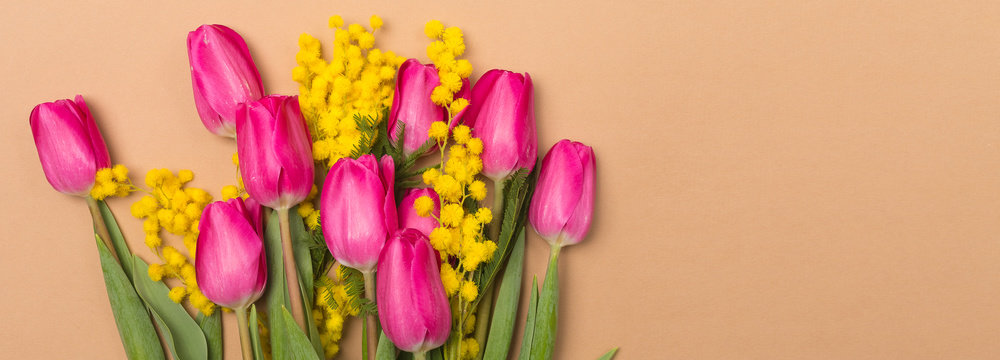 Spring Summer beige background with spring flowers. Free space. Copy space.Top view. Tulips and mimosa.