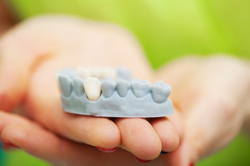 Dentist hand holding of jaw model of teeth and cleaning dental with dental tool. Technical shots on a dental prothetic laboratory