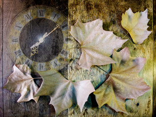 clock and leaves on the wooden background