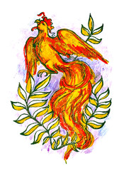 The picture of the bird Phoenix of fire colors