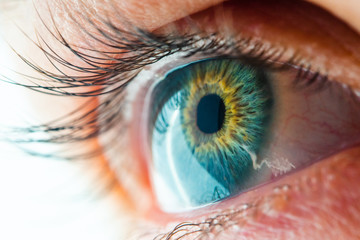 Beautiful Human Eye with Long Eyelashes Macro View. Amazing View of Iris Close-Up