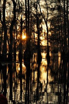 Sunset in the Atchafalaya Basin, Louisiana, USA
