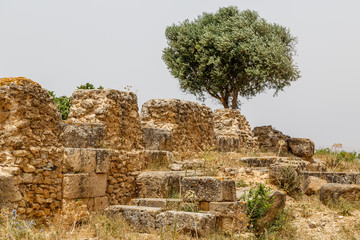Ruins of the ancient port town Utica, Tunisia