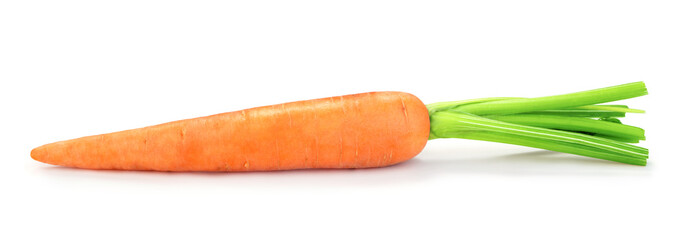 Wall Mural - single fresh carrot isolated on white background