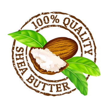 Vector grunge rubber stamp 100 quality shea butter on a white background. Shea nuts, butter and green leaves.