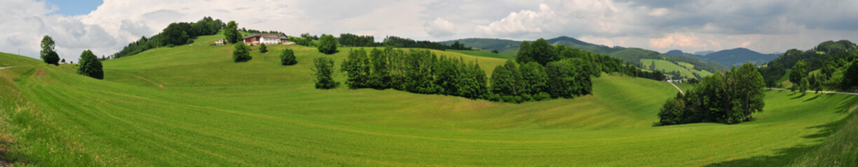 Foto op Plexiglas Pistache alpine landscape, grassland, hills
