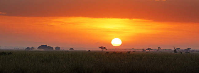 Aluminium Prints Brick Sunrise in Amboseli National Park
