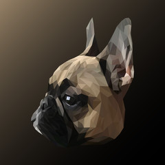 French bulldog animal low poly design. Triangle vector illustration.