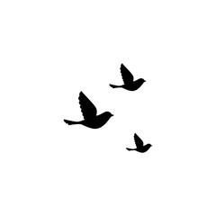 Flying birds isolated on white background. Vector illustration.