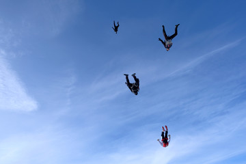Skydiving.  A flock of skydivers is flying in the sky.